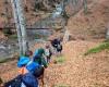 Οι Μικροί Εξερευνητές του Irbis στο όρος Πάϊκο 22/11/2015